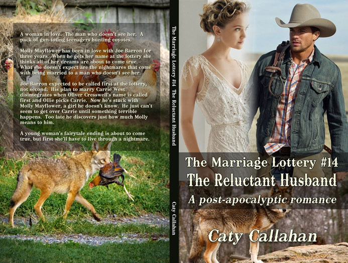 Marriage Lottery 14 The Reluctant Husband by Caty Callahan | Sweet Christian romances for couples